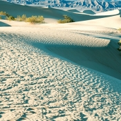 Death Valley Dunes by Peter Nussbaum