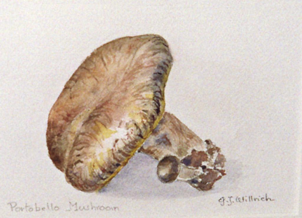 Portobello Mushroom by Jacqueline Willrich
